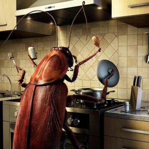 Борьба с насекомыми – как применяются ловушки и ловчие пояса. Инструкция по созданию ловушек своими руками (75 фото)