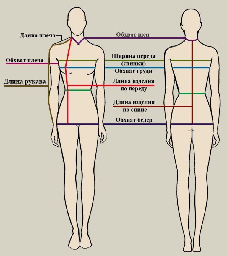 Картинка измерения плечо