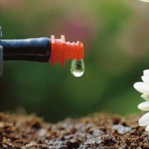 Полив своими руками: капельная система полива из подручных материалов. 90 фото и пошаговая инструкция по созданию системы